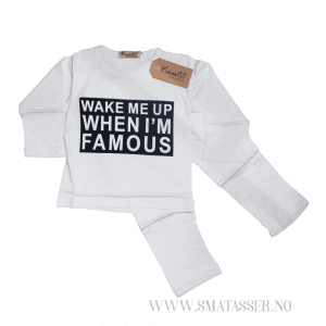 Wake me up when Im famous - sett