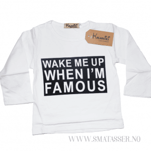 Wake me up when Im famous - sett