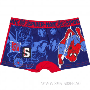 Spiderman boxer