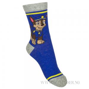 paw patrol sokker chase