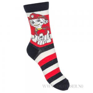 paw patrol sokker marshall